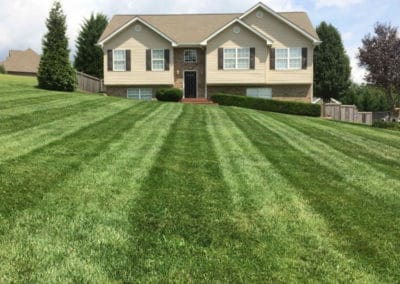 lawn care and maintenance near me