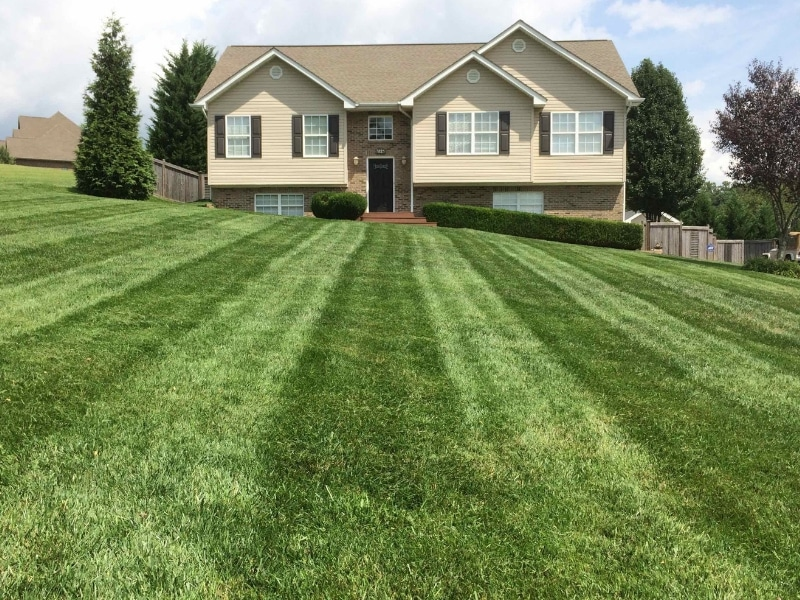 See our 5 STAR Mowing Service Reviews   Hall's Pro
