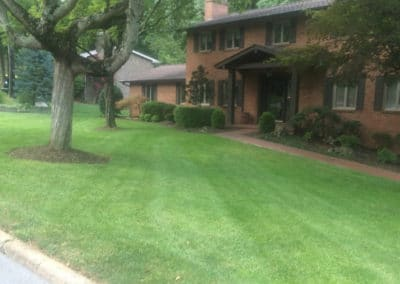lawn mowing service kingsport tn