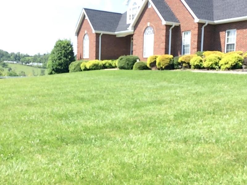 yard mowers near me